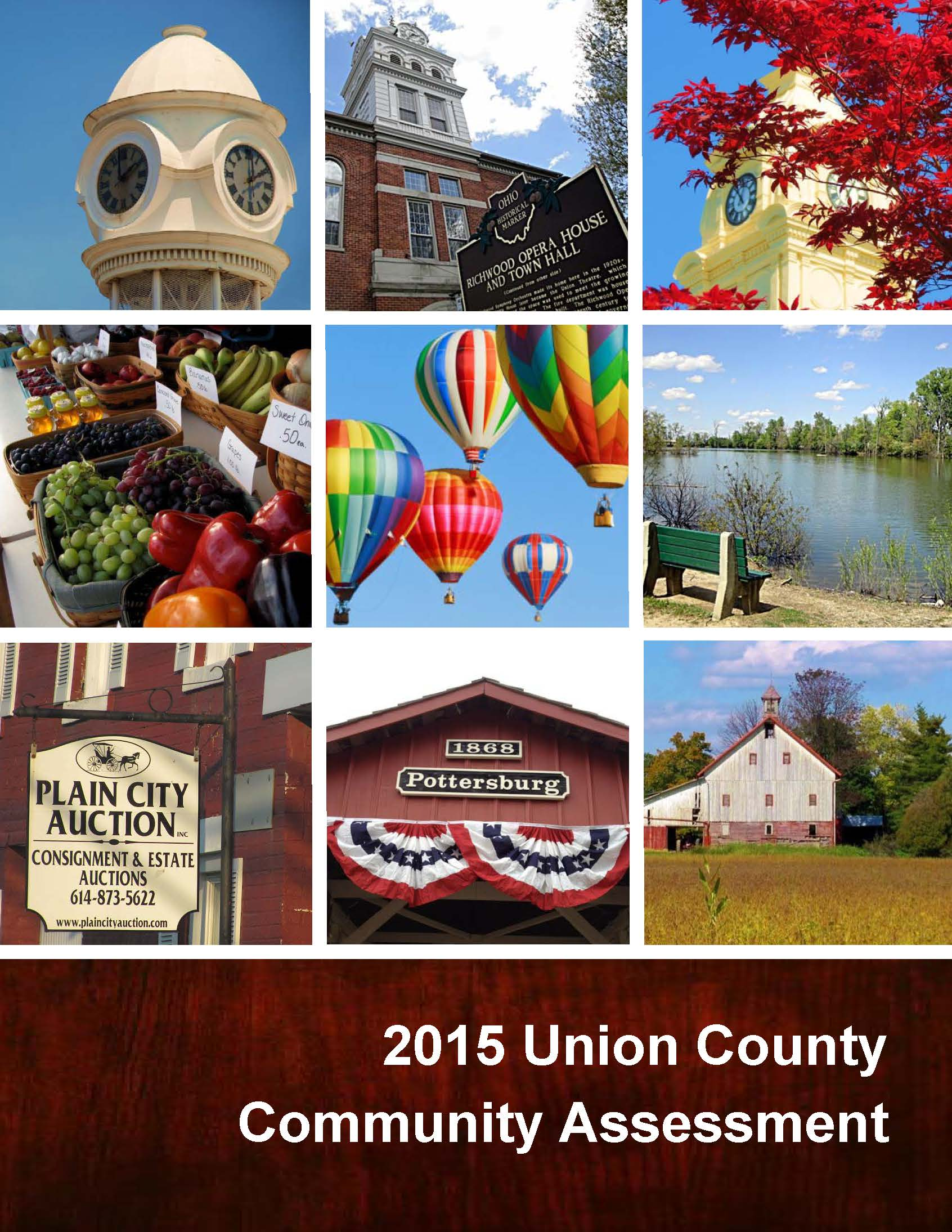 Union County Community Assessment cover image